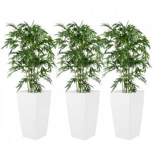 Bilde av 3 Stk Kunstige Bambus i Piza Designpotter 180cm