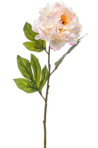 """Bilde av Kunstig Peon Stilk """"Chelsea"""" Rosa 77cm"""