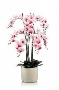 Bilde av Kunstig Orkide Rosa i Keramikkpotte 100cm