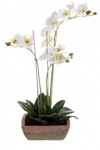 Bilde av Kunstig Orkide i Retro Potte 60cm